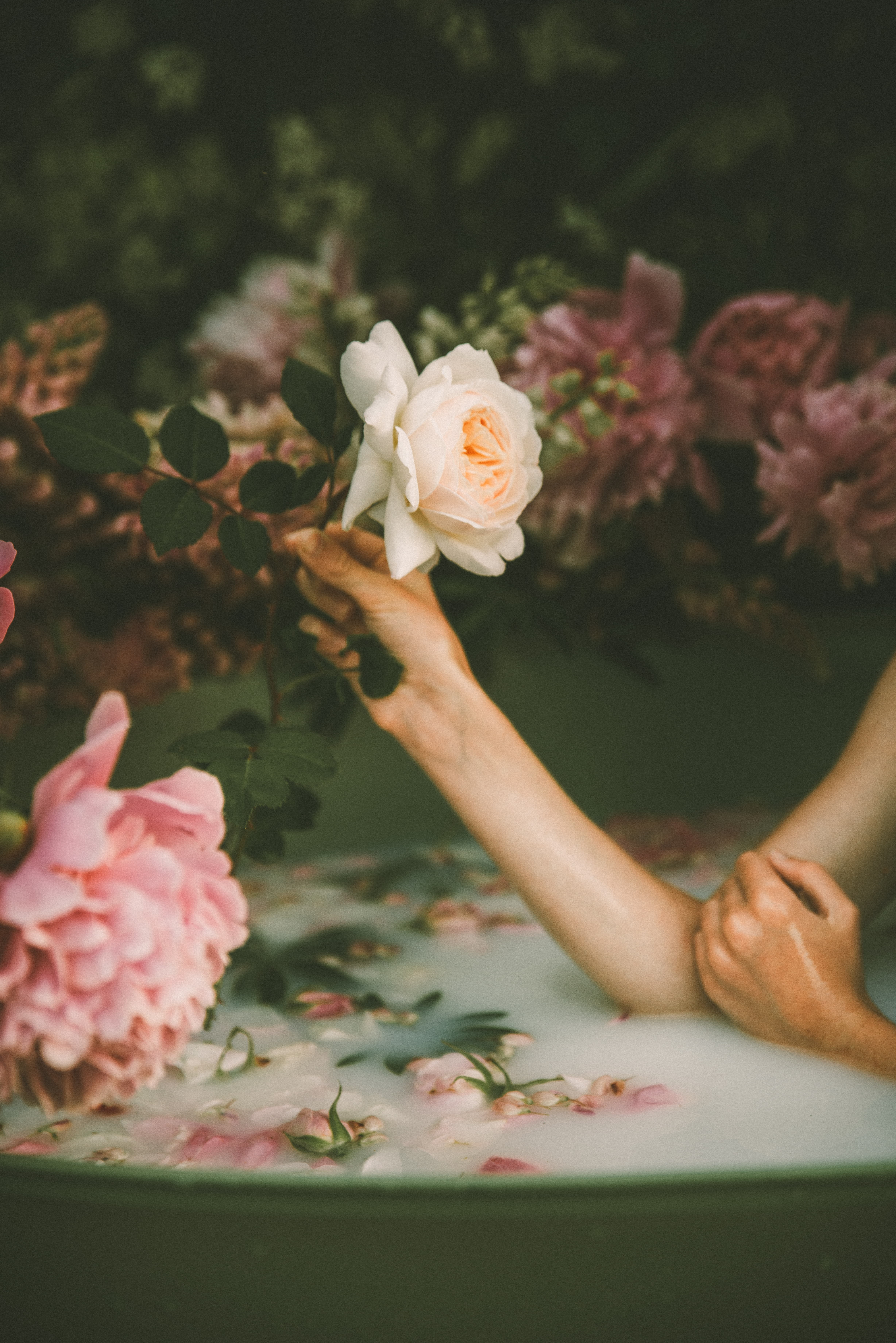 bain-hydratation-fleur